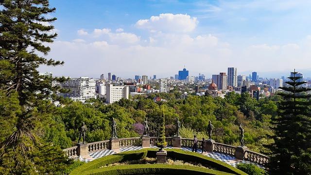 Encuentra las mejores Prótesis de Pierna en Miguel Hidalgo